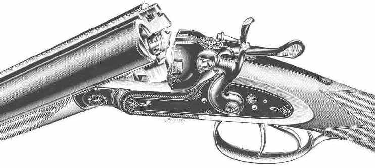 Dessin Fusil De Chasse introduction aux armes de chasse à canon lisse - smooth bore